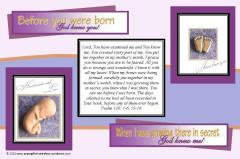 Baby in Womb postcard 4x6; free printable