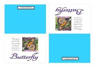Butterfly Notecards A4