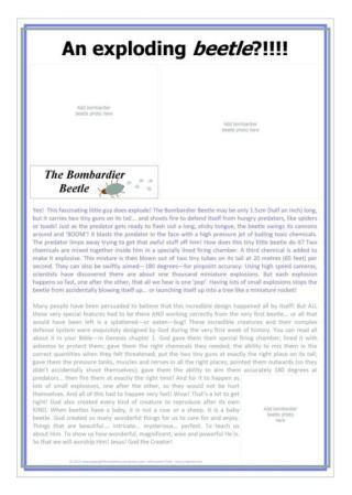 Bombardier Beetle Article-SAMPLE