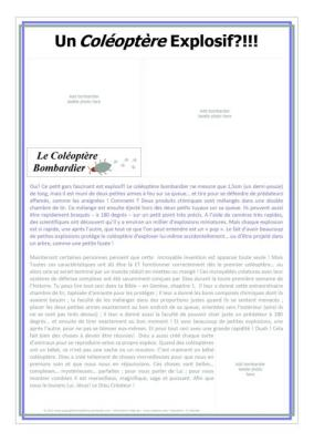 FRENCH Bombardier Beetle Article-SAMPLE