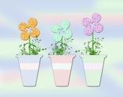 spring-flower-tubs