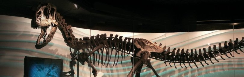 Ebenezer, AIG new dinosaur exhibit