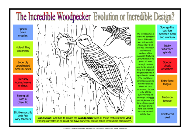 FREE Woodpecker puzzle for kids; free printable