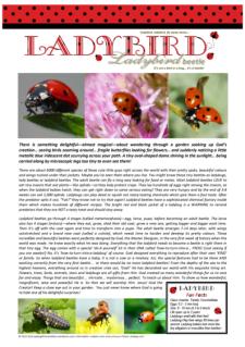 FREE Ladybug article for kids; free printable