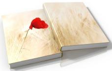 pixabay-book