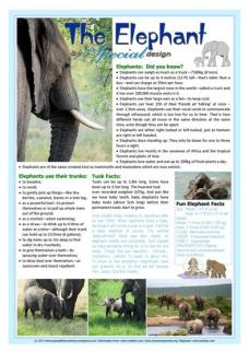 Elephant free printable article for kids A4