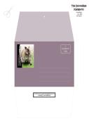 FREE Kangaroo Stationery, Envelope + Envelope Liner with Bible verse Nehemiah 9:17