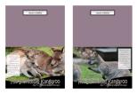 FREE Kangaroo Note Cards with Bible verse Nehemiah 9:17