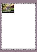 PGFE Kangaroo Stationery1 A4