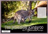 FREE Kangaroo Poster with Bible verse Nehemiah 9:17