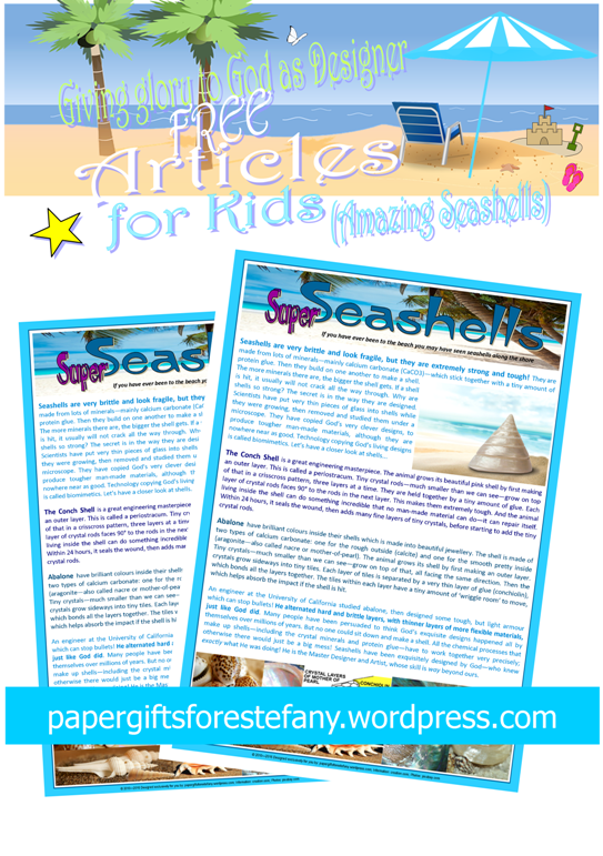 Seashells article for kids giving glory to God as designer; free printable