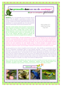 PGFE Frog Article FRENCH A4