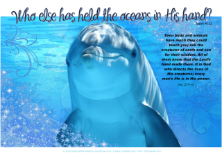 PGFE Ocean Bible Poster-Dolphin with Bible verse from Isaiah 40:12-who else has held the oceans in His hand-and Job 12:7-10- birds and animals have much to teach you; free printable