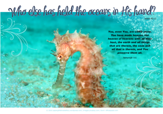Seahorse - Bible Poster by Paper Gifts for Estefany with Bible verses from Isaiah 40:12 - Who else has held the oceans in His hand; and Nehemiah 9:6 - You, even You, are LORD alone. You have made heaven, the heaven of heavens with all their host, the earth and all things that are therein, the seas and all that is therein, and You preserve them all; free printable