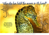 Seahorse - Bible Poster by Paper Gifts for Estefany with Bible verses from Isaiah 40:12 - Who else has held the oceans in His hand; and Psalm 33:18 - The Lord watches over those who obey Him, those who trust in His constant love; free printable