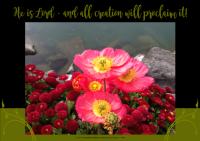 FREE Bible Poster; He is Lord and all creation will proclaim it; pretty red flowers; free printable