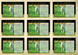 Psalm 23; Shepherd's Psalm; Bible Wallet Cards; free printable