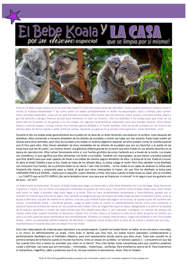 FREE koala article for kids in SPANISH; giving glory to God as designer; free printable