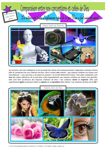 FRENCH Comparing Gods Designs to Ours; Biomimetics Article for kids; free printable