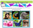 Comparing Gods Designs to Ours; Biomimetics Article for kids; free printable