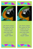 FREE Bible bookmark with Bible verse from Psalm 148:5; macaw parrot on lime green background; free printable