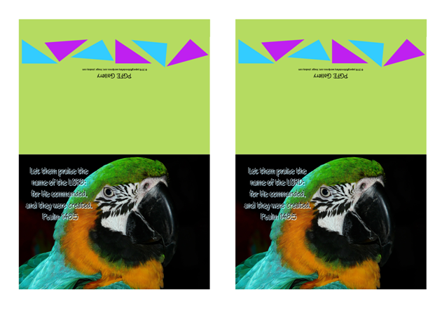 FREE Bible note cards with Bible verse from Psalm 148:5; macaw parrot on lime green background; free printable