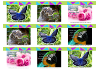 FREE Biblewallet cards with Bible verse from Psalm 148:5; blue butterfly, koala, pink roses, macaw; lime green background; free printable