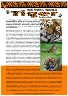 Tiger Article for kids; free printable