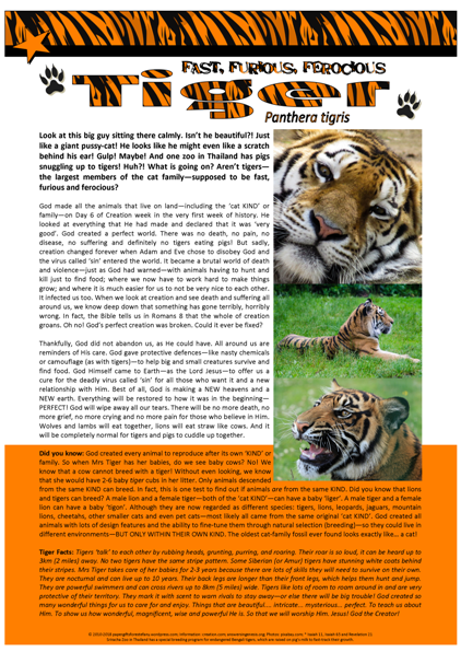 Tiger Article For Kids Free Printable