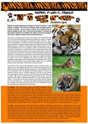 Tiger FRENCH Article for kids; free printable