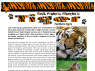 SAMPLE Tiger Article for kids; free printable