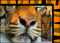 FREE Bible poster with tiger photo and Bible verse from Joshua 1:9 on striped orange/black background; free printable