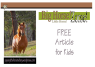 Horse / Zebra / Donkey Article for kids; free printable