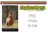 Horse / Zebra / Donkey Article for kids; free printable