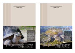 Turtle Photo Note Cards4 A4