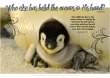 FREE Bible poster featuring a cute emperor penguin chick sitting on Dad's feet; Bible verses from Zephaniah 3:17 and Isaiah 40:12; free printable