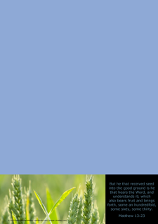 FREE The Parable of the Sower Stationery with Bible verse from Matthew 13:23; blue background; free printable