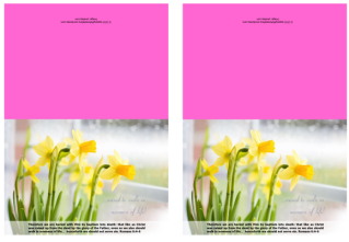 FREE Daffodil Note Cards with Bible verses from Romans 6:4-6; free printable