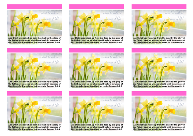 FREE Daffodil Wallet Cards with Bible verses from Romans 6:4-6; free printable