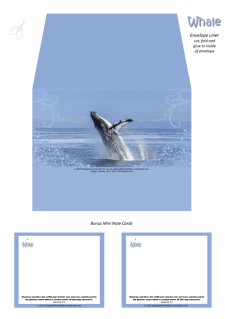 FREE Whale Envelope Liner featuring a magnificent breaching whale on blue background; free printable