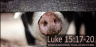 FREE The Parable of the Prodigal Son Poster; Luke 15; free printable