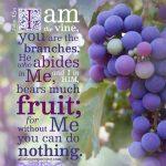 FREE I am The Vine Bible poster; free printable