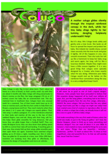 Colugo article for kids; pink, green and yellow fleuro background; free printable
