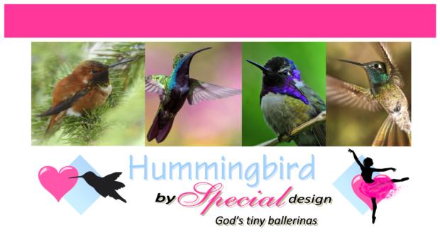 FREE Hummingbird article for kids giving glory to God as Creator; free printable